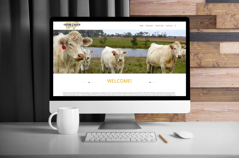 Computer-Monitor-Geyer-Cattle_WEB