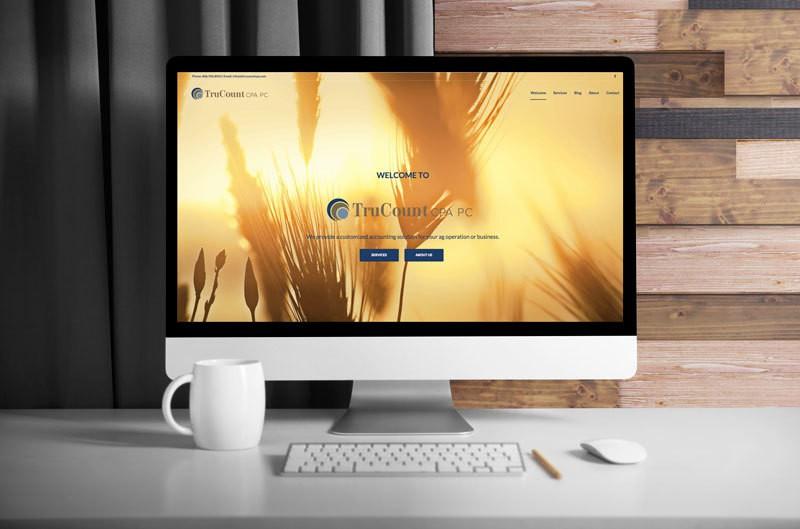 Computer-Monitor-TruCount_WEB