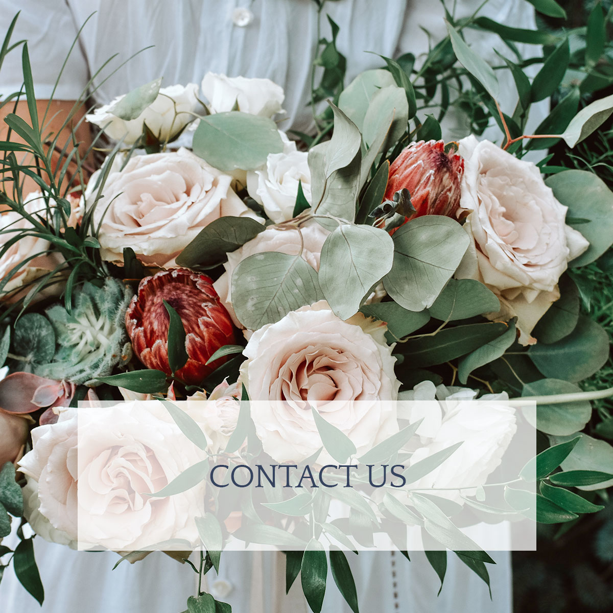 Contact-Us_Home