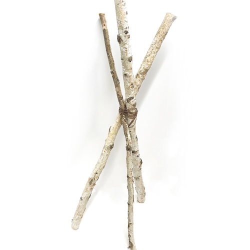 WeddingDecor-Birch-Branches-Tall