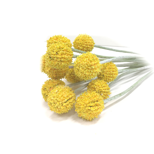 WeddingDecor-Yellow-Billy-Balls